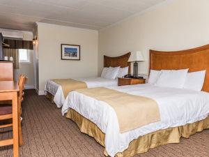 Desert Sand Resort Avalon Motel Nj Avalon Lodging Nj Avalon New Jersey Motel Avalon New Jersey Lodging Avalon Nj 08202
